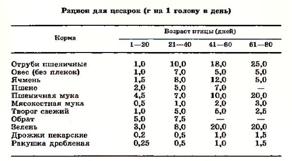 Таблица норм кормления цесарок