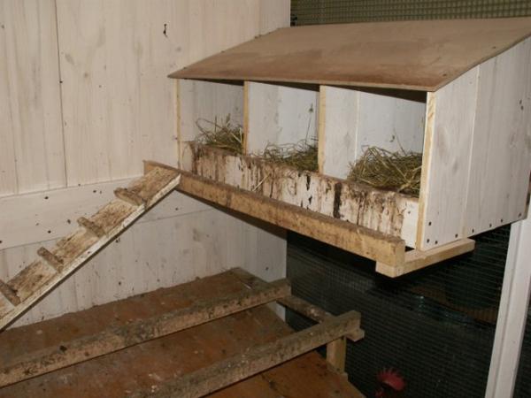 Полка с гнездами