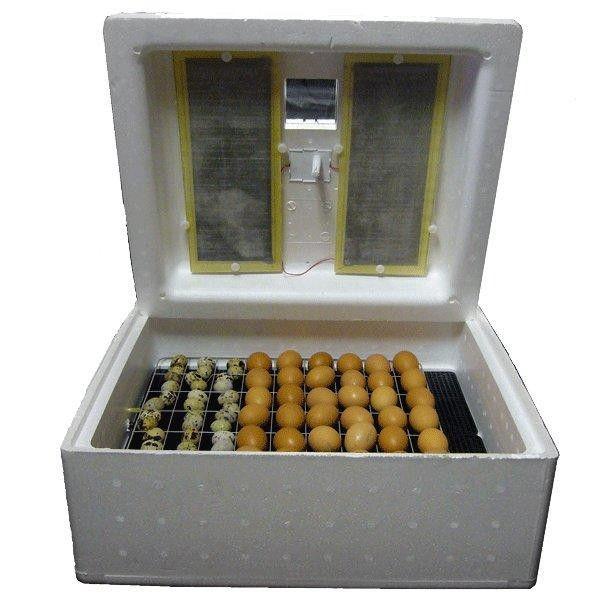 Наполненный яйцами инкубатор