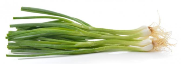 Зелень лука на белом фоне