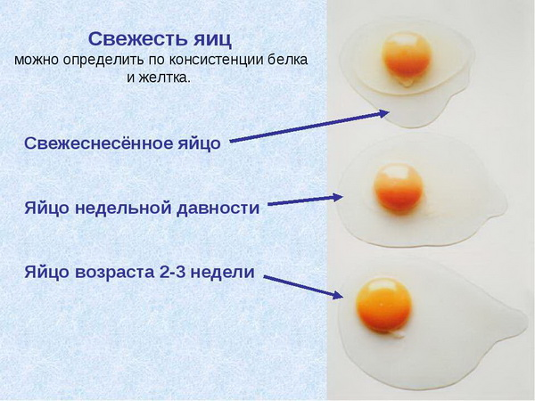 Схема проверки на свежесть
