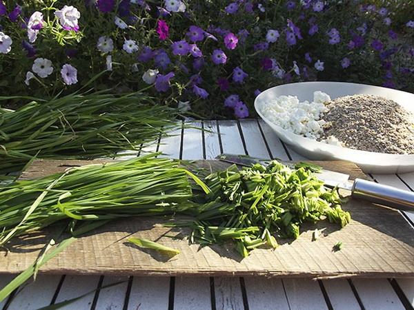 Подготовка травы птенцам